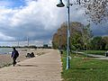 Toronto The Beach 12 (8437494847).jpg