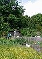 Town's Pit, Hessle - geograph.org.uk - 466471.jpg