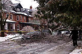 Tree falls on car By Ron Bulovs (Flickr: Crushed!) [CC-BY-2.0 (https://creativecommons.org/licenses/by/2.0)], via Wikimedia Commons