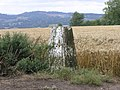 Trig Point near Chaldon - geograph.org.uk - 31122.jpg