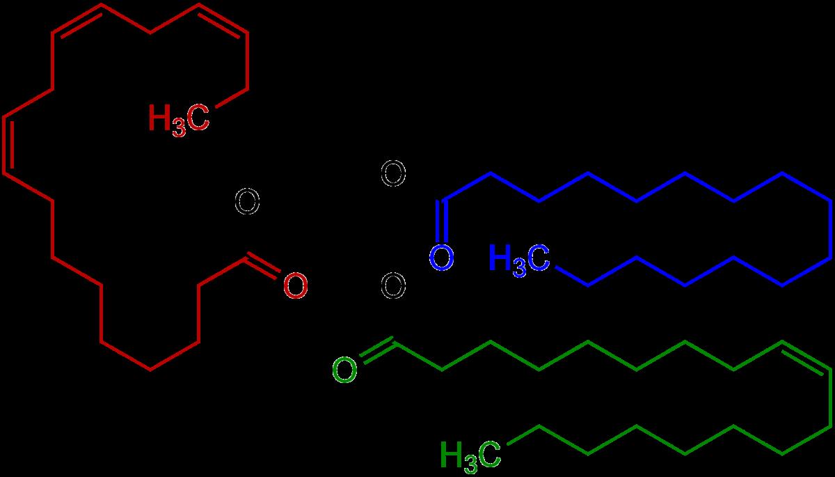 Triglycerid - Wikipedia, den frie encyklopædi
