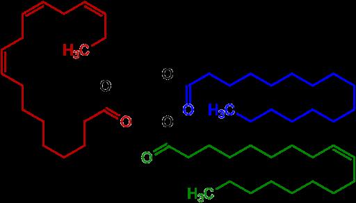 Triglyceride Structural Formulae V.1