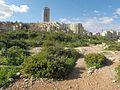 Triq Il- Wilga, San Ġiljan, Malta - panoramio (2).jpg