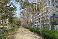 Tung Chung Harbourfront Road path 2016.jpg