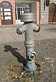 Tuzla - Trg slobode - Fire hydrant (2019).jpg
