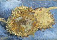 Two sunflowers.jpg