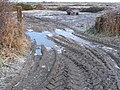 Tyre Tracks in the Mud - geograph.org.uk - 96989.jpg