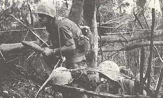 3rd Battalion, 4th Marines - A U.S. Marine from 3d Battalion, 4th Marines moves forward during Operation Prairie