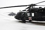 UH-60s in a blizzard 120313-A-Cr252-011.jpg