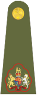 UK Army OR9a.png