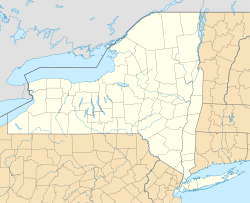 Warwick (village), New York is located in New York