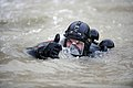 US Navy 091128-N-4154B-063 Navy Diver 2nd Class Zachery Dojaquez comes to the surface of the water during a dive.jpg