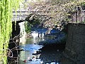Union Street Bridge and Leith Stream, Dunedin, NZ.jpg