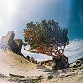 Unname - panoramio (1052).jpg