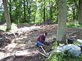 Varnhem innan munkarna kom, den 13 juni 2007, bild 20.jpg