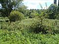 Vauzelles Niffonds 07-08-2011 02.JPG