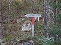 Veien til Stomnås - panoramio (1).jpg