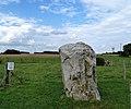 Vendegies-sur-Écaillon,.- Le Menhir dit Le Gros Caillou ou Grès Montfort (4).jpg
