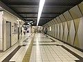 View in Kire-Uriwari Station.jpg