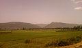 View near Elamanchili town 02.jpg