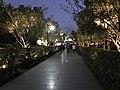 View near entrance of Xitang Town at night.jpg