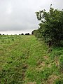 View south from field beside the Paston Way - geograph.org.uk - 961104.jpg