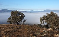 View towards Mount Tuggeranong from Wanniassa Hills Nature Reserve on a misty morning