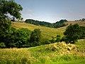 View up the valley of Bradley Burn from Vindolanda - geograph.org.uk - 918762.jpg