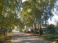 Village Bikovo 15.JPG
