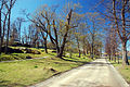 Visit-suomi-2009-05-by-RalfR-190.jpg