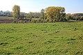 Vlaamse Ardennen 13.jpg