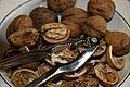 Walnuts 01.jpg