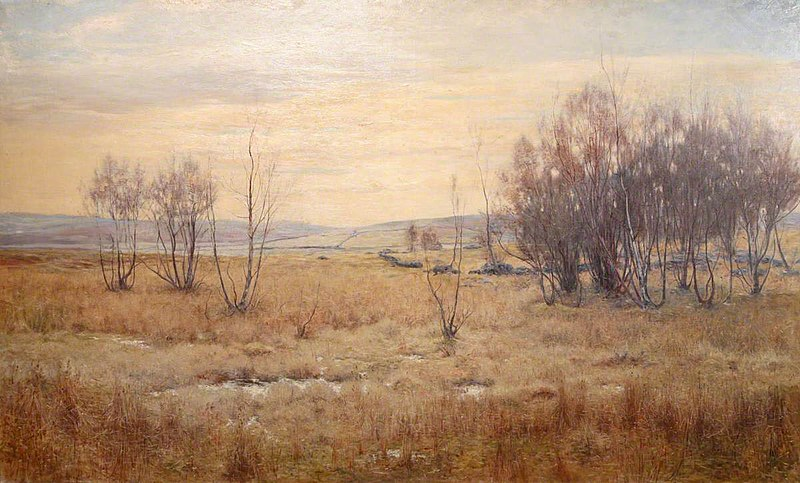 File:Walter Bertram Potter (1872-1918) - Moorland Landscape with Bare Trees - 642006 - National Trust.jpg