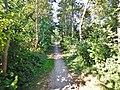 Wanderweg bei Großenbrode - panoramio.jpg