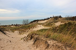 Warren Dunes State Park state park of a state of the United States