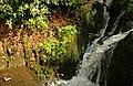 Waterfall, Crawfordsburn Glen (4) - geograph.org.uk - 767833.jpg