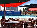 Wet n Wild Orlando wave pool 4.jpg