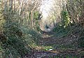 Willsbridge Cutting, Avon & Glos. Railway. - panoramio.jpg