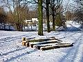 Winter in Rotterdam IJsselmond 30-01-2010 - panoramio.jpg