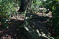 Wlz1209 ked cmentarz żydowski pozostałości Boh Getta 06.jpg