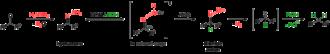 Wolff–Kishner reduction - Scheme 1-1. Summary of mechanism of Wolff-Kishner reaction