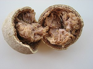 List Name Of Khmer Food
