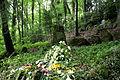 Wuppertal - Waldfriedhof Krummacherstraße - Pina 05 ies.jpg