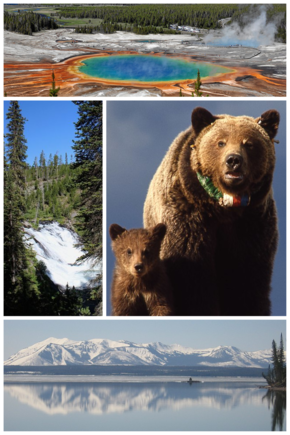 YellowstoneNationalParkCollage.png