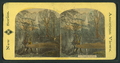 Yo-Semite Valley, from Robert N. Dennis collection of stereoscopic views.png