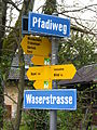 Zürich - Burgwies IMG 6496.JPG
