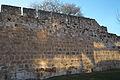 Zamora Murallas 849.jpg
