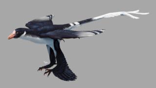 <i>Zhongjianosaurus</i> Extinct genus of reptiles