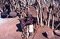 Zulu village 7.JPG