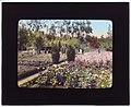 """Newmar,"" Senator George Almer Newhall house, 1761 Manor Drive, Hillsborough, California. LOC 6950346928.jpg"